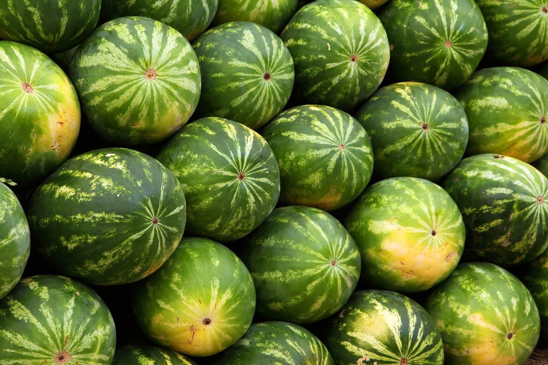 Сладкий август. Как покупают арбузы и дыни
